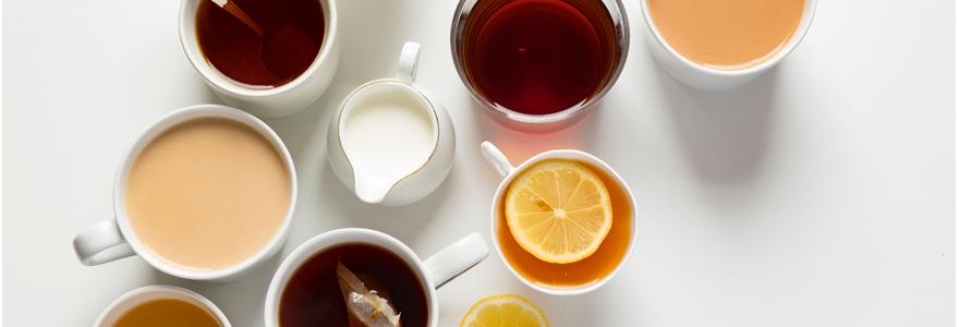 Dammann Frères, le thé haut de gamme